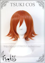 Cosplay accessories Wigs / Hair Extensions goods in stock Tsuki Wig + Hair Net Cartoon characters
