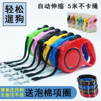 Household traction belt other Dog Scalable Please note the size of the collar, no note! Red green blue black orange pink 3M [within 30kg] 5m [within 30kg]