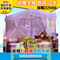 Mosquito net Light pink high precious violet light jade medium pink white milky white yellow red gold purple green light blue light yellow violet orange deep purple pink sky blue bright yellow Xihuang 3 doors Palace mosquito net currency stainless steel