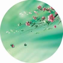 umbrella Craft umbrella Wang Shu bamboo Color printing umbrella Oil paper Long umbrella Manually