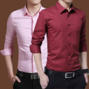 shirt Youth fashion Kailai Mountain Wolf Collection priority delivery full two cotton socks s ml XL 2XL Long shirt white long shirt black long shirt wine red long shirt light blue long shirt Dark Blue Long Shirt PINK routine Long sleeves Pointed collar (regular) Self cultivation go to work spring