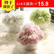 Artificial flower silk flower Place flowers flowers