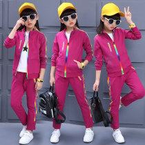 suit Suplusin / supujin Purple Royal Blue Rose female spring and autumn motion Long sleeve + pants 2 pieces routine Zipper shirt nothing other cotton