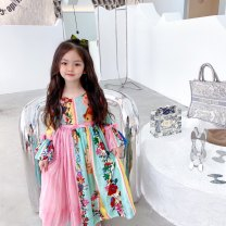 Dress Oil painting princess skirt female Other / other 90cm,100cm,110cm,120cm,130cm,140cm,150cm,160cm Other 100% silk Princess Dress Chinese Mainland