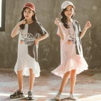Dress White, pink female Keninke 110cm,120cm,130cm,140cm,150cm,160cm,165cm Cotton 95% other 5% summer Korean version Short sleeve letter cotton Lotus leaf edge Class B Chinese Mainland