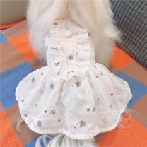 Pet clothing / raincoat currency Dress K&Z princess Fresh white, new transparent white, limited color baby blue, skirt has been improved (don't shoot this option)