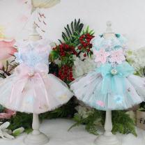 Pet clothing / raincoat currency Dress XS,S,M,L,XL Bear bubble princess