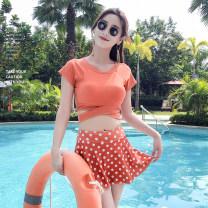 Split swimsuit M,L,XL,XXL Skirt split swimsuit Steel strap breast pad Others, polyester, nylon