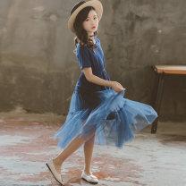 Dress blue female MY GIRL MY BOY 120cm,130cm,140cm,150cm,160cm,165cm Cotton 95% other 5% summer Korean version Short sleeve Solid color cotton A-line skirt 20190518-2 Class B Chinese Mainland