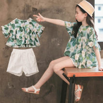 suit Luofeng green female summer Korean version Long sleeve + pants 2 pieces Thin money There are models in the real shooting Socket nothing other other children Learning reward LF-TK-639 -1 Class B Viscose 55% cotton 45% Summer of 2019 Chinese Mainland