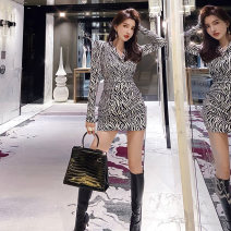 Dress Autumn 2020 Zebra pattern S M L XL Mid length dress singleton  Long sleeves commute V-neck High waist stripe zipper Pencil skirt routine Others 30-34 years old Type X Qianhe Korean version zipper qh-20-9-hjl-50 81% (inclusive) - 90% (inclusive) polyester fiber Polyester 90% other 10%