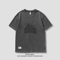 T-shirt Youth fashion Gray, white, khaki routine M,L,XL,XXL,XXXL Others Short sleeve Crew neck easy daily summer youth Off shoulder sleeve Youthful vigor cotton Human landscape