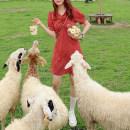 Dress Summer 2020 Retro Red XL,L,M,S Short skirt singleton  Short sleeve Sweet V-neck High waist Decor Socket A-line skirt routine Type X Zipper, fold Chiffon