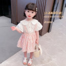 suit Mikir / mikir Purple Pink 80cm 90cm 100cm 110cm 120cm 130cm female summer Korean version Short sleeve + skirt 2 pieces Thin money There are models in the real shooting Socket nothing Broken flowers cotton children MXMYX15 Class A Cotton 95% other 5% Summer 2021 Chinese Mainland Jiangsu Province