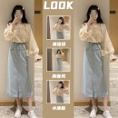 Women's large Spring 2021 Other oversize styles Two piece set commute easy moderate Socket Long sleeves Solid color Korean version Crew neck routine Three dimensional cutting Lotus leaf sleeve Savirry / shafeli pocket Medium length Other 100.00% Pure e-commerce (online only) other