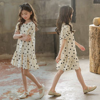 Dress Apricot female Bassimia 130cm 140cm 150cm 160cm 170cm Cotton 100% summer Korean version Short sleeve Dot Lotus leaf edge Class B Summer 2020 5 years old, 6 years old, 7 years old, 8 years old, 9 years old, 10 years old, 11 years old, 12 years old, 13 years old, 14 years old