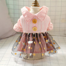 Pet clothing / raincoat currency Dress XS - about 3 kg s - about 5 kg m - about 8 kg L - about 10 kg XL - about 15 kg PETCIRCLE princess Pink stripe, pink and blue