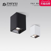 Downlight Zhiyu LED  111V ~ 240V (including) With light source aluminium 21W (inclusive) - 30W (inclusive) 3 years Intelligence is not supported S012  No Intelligent voice control app control intelligent switch control connected tmall spirit