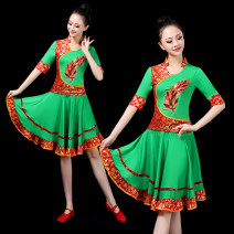 National costume / stage costume Summer 2020 Green dress red dress rose red dress yellow dress green suit pants red suit pants rose red suit pants yellow suit pants Ml XL 2XL 3XL 4XL 5XL 6xl customized size contact customer service RC-079 Ren CAI Over 35 years old Other 100%