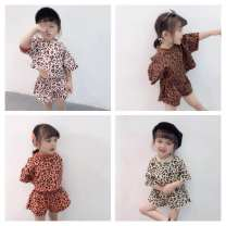suit Other / other 80, 90, 100, 110, 120, 130 female summer princess Short sleeve + pants 2 pieces Thin money There are models in the real shooting Socket nothing Leopard Print cotton children Giving presents at school Class B Cotton 100% Chinese Mainland Guangdong Province Dongguan City