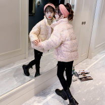 Cotton padded jacket female nothing Cotton 81% - 90% Other / other Lake blue, white, pink, black 120cm,130cm,140cm,150cm,160cm,170cm thickening Zipper shirt Korean version There are models in the real shooting Solid color other Class B stand collar Cotton liner 10, 11, 12, 13, 14, 4, 5, 6, 7, 8, 9