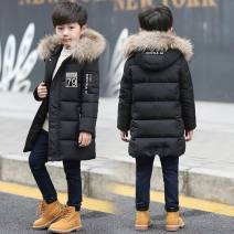 Cotton padded jacket male Detachable cap Cotton 91% - 95% Other / other thickening leisure time Class B Cotton liner Three, four, five, six, seven, eight, nine, ten, eleven, twelve