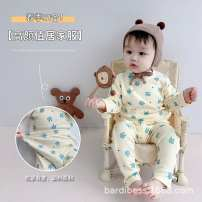 Home suit Other / other Decor spring and autumn 12 months hygroscopic and sweat releasing cotton Class A