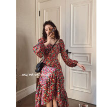 Women's large Spring 2020, autumn 2020 Dress singleton  Self cultivation moderate Socket Plants and flowers 25-29 years old