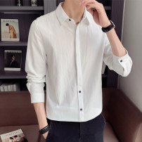 shirt Youth fashion First tone M L XL 2XL 3XL 4XL routine Pointed collar (regular) Long sleeves Self cultivation Other leisure autumn Cotton 100% tide 2020 Solid color Color woven fabric Autumn 2020 No iron treatment cotton Button decoration Pure e-commerce (online only) More than 95%