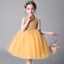 Children's dress female full dress other polyester fiber Polyester 100% Summer of 2019 2 years old, 3 years old, 4 years old, 5 years old, 6 years old, 7 years old, 8 years old, 9 years old, 10 years old, 12 years old, 13 years old, 14 years old princess