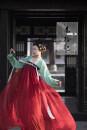 Custom made Hanfu Green cardigan, dark red, one piece waist skirt, one piece chest skirt M,S,L,XL,XXL female Spring collection