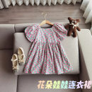 Dress Pink female Other / other 90cm,100cm,110cm,120cm,130cm Other 100% summer Korean version Short sleeve Broken flowers other A-line skirt 18 months, 2 years old, 3 years old, 4 years old, 5 years old, 6 years old, 7 years old, 8 years old Chinese Mainland