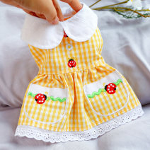 Pet clothing / raincoat currency Dress XS,S,M,L,XL PETCIRCLE princess Yellow (scheduled for about 5 days)