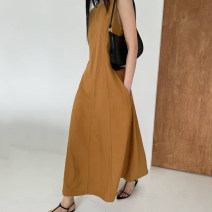 Dress Summer 2021 Light brown, dark grey Average size longuette commute 18-24 years old Type H 31% (inclusive) - 50% (inclusive)