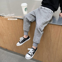trousers Haima house male 100cm,110cm,120cm,130cm,140cm,150cm,160cm grey spring and autumn trousers Korean version There are models in the real shooting Casual pants Leather belt middle-waisted Pure cotton (100% content) Don't open the crotch Cotton 100% 21ak08 Class B 2, 3, 4, 5, 6, 7, 8, 9, 10, 11