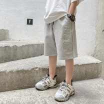 trousers Haima house male 110cm,120cm,130cm,140cm,150cm,160cm Light grey summer Pant Korean version There are models in the real shooting Casual pants Leather belt middle-waisted cotton Don't open the crotch Class B 2, 3, 4, 5, 6, 7, 8, 9, 10, 11 Chinese Mainland