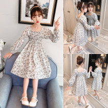 Dress white female Other / other 110, 120, 130, 140, 150, 160 Cotton 90% other 10% spring and autumn lady Long sleeves Broken flowers cotton A-line skirt Class B Four, five, six, seven, eight, nine, ten, eleven, twelve, thirteen, fourteen Chinese Mainland Zhejiang Province Huzhou City