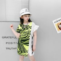 Dress Green, white female Summer is coming 110cm,120cm,130cm,140cm,150cm,160cm Cotton 100% summer leisure time Short sleeve stripe cotton A-line skirt dlm-A177 Class B 7, 8, 3, 6, 11, 5, 4, 10, 9, 12 Chinese Mainland Zhejiang Province Huzhou City