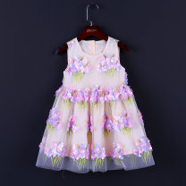 Dress Three dimensional floating flower Foundation female Childhooddays / Xiong Yinuo 110cm, 150cm, 160cm, 100cm, 155cm, 80cm, 130cm, 90cm, 140cm, 120cm. Mother's skirt can be customized by contacting customer service Polyester 100% summer princess Skirt / vest other other Pleats Class B Wuxi City