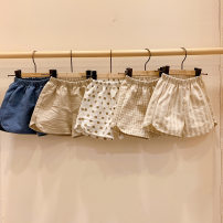 trousers Roy bear neutral 73cm,80cm,90cm,100cm Blue, khaki, small grid, stripe, wave point summer shorts Korean version No model Casual pants Leather belt middle-waisted Pure cotton (100% content) Don't open the crotch 9 months, 18 months, 2 years, 3 years