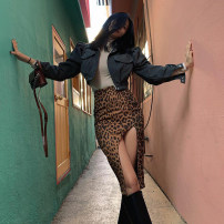 skirt Autumn 2020 S,M,L Leopard Print longuette commute High waist skirt Leopard Print Type H 18-24 years old 91% (inclusive) - 95% (inclusive) KLALIEN polyester fiber zipper Britain