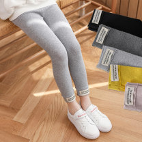 trousers Beijirog / Arctic velvet female 100cm 110cm 120cm 130cm 140cm 150cm Light grey black dark grey lotus root pink yellow spring and autumn trousers Korean version There are models in the real shooting Leggings Leather belt middle-waisted cotton Don't open the crotch h3310 h3310 Spring 2020
