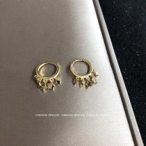 Earrings Silver ornaments 51-100 yuan Other / other Golden couple! Silver pair! brand new female Japan and South Korea goods in stock Fresh out of the oven other other 925 Silver