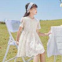 Dress White dress female Basil bean 120cm 130cm 140cm 150cm 160cm 170cm Cotton 60% polyamide 40% summer Korean version Short sleeve Solid color other A-line skirt X67 Class B Summer 2021 Chinese Mainland Zhejiang Province Taizhou City
