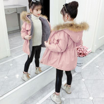 Cotton padded jacket female No detachable cap other Other / other Yellow, apricot, pink 110cm,120cm,130cm,140cm,150cm,160cm thickening Zipper shirt Korean version There are models in the real shooting Solid color Class B Crew neck Other 100% Cotton liner JHR01 Other 100% Chinese Mainland