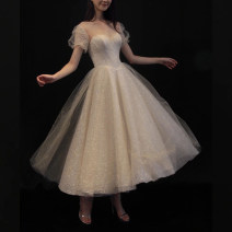 Dress / evening wear Wedding, adulthood, party, company annual meeting, performance, routine, appointment XS,S,M,L,XL Champagne (t1106) Sweet Medium length middle-waisted Winter 2020 Fluffy skirt polyester 18-25 years old T1106 Short sleeve Yilan