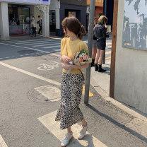 skirt Summer 2021 S M L Leopard Mid length dress Versatile High waist Irregular Leopard Print 18-24 years old 0408 - 01 More than 95% Fat man world other Other 100%