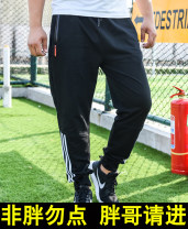 Casual pants Others Youth fashion routine trousers Other leisure easy get shot Four seasons Large size Youthful vigor 2020 middle-waisted Little feet Sports pants Geometric pattern Terry cloth cotton