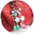 Key buckle Meimei wholesale 8 Brown green purple pink resin Photo type A-2070 Macarone