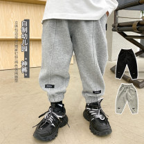 trousers DDJ BIBI neutral 90cm,100cm,110cm,120cm,130cm,140cm,150cm Gray, black, gray - Black - gray third batch spring and autumn trousers Knickerbockers K-21009